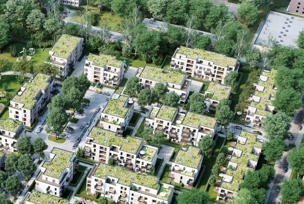 574 Ausschnitt Suderfeld Park